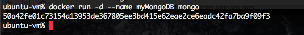 Running a named MongoDB container