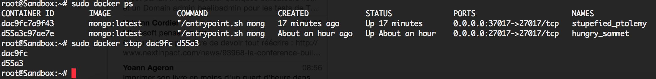 Running MongoDB as a Docker container · Thach Mai